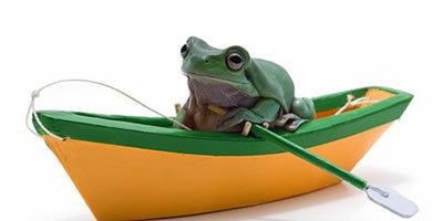 Chunky Frog's Dude In The Boat